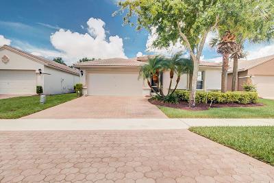 Boynton Beach Single Family Home For Sale: 8201 Florenza Drive