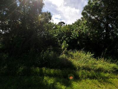 Port Saint Lucie FL Residential Lots & Land For Sale: $33,999