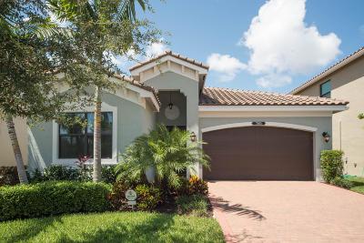 Delray Beach Single Family Home For Sale: 7891 Blue Tanzanite Way
