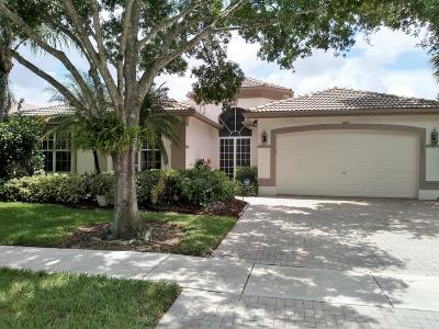 Boynton Beach Single Family Home For Sale: 11571 Puerto Boulevard