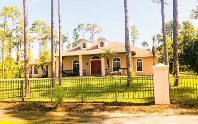 Loxahatchee Single Family Home For Sale: 15895 Key Lime Boulevard