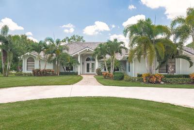 Palm City Single Family Home For Sale: 4132 SW Bimini Circle