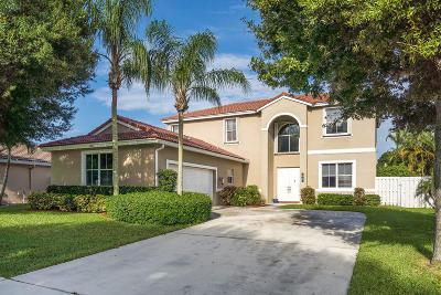 Lake Worth Single Family Home For Sale: 6791 Las Colinas Lane