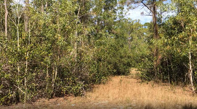 Palm Beach Gardens Residential Lots & Land For Sale: 00000 144th Court