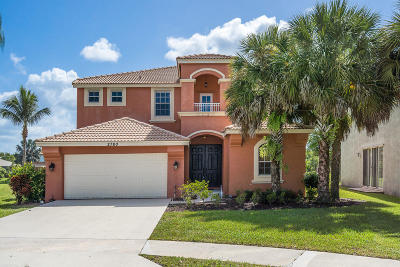 Royal Palm Beach Single Family Home For Sale: 2780 Willow Way
