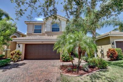 Boynton Beach Single Family Home For Sale: 8861 Morgan Landing Way