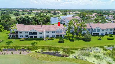 Palm Beach Gardens Condo For Sale: 401 Ryder Cup Circle Circle S