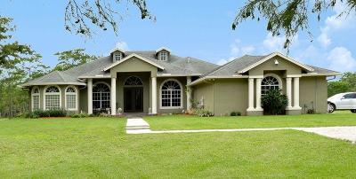 Loxahatchee Single Family Home For Sale: 2744 Deer Run Trail