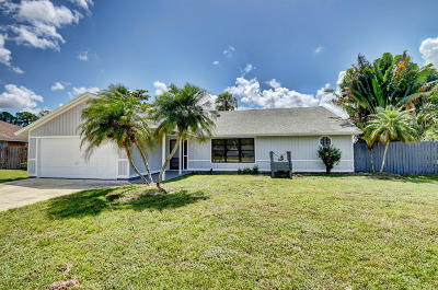 Royal Palm Beach Single Family Home Contingent: 117 Cordoba Circle
