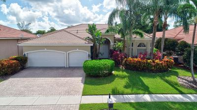 Boca Raton Single Family Home For Sale: 9539 Parkview Avenue