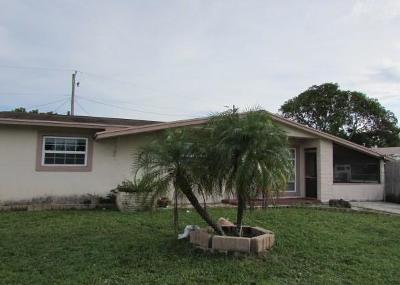 West Palm Beach Single Family Home For Sale: 6080 Fairgreen Road