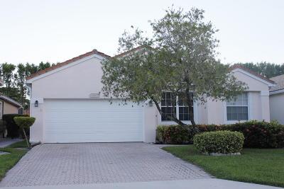 Boynton Beach Single Family Home Contingent: 6960 Camille Street