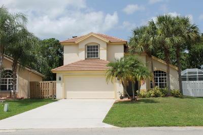 Lake Worth Single Family Home For Sale: 7687 Brunson Circle