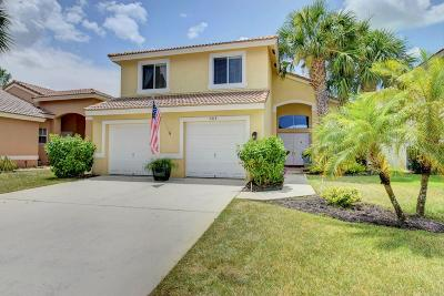 Lake Worth Single Family Home For Sale: 5213 Prairie Dunes Village Circle
