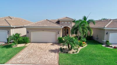 Boynton Beach Single Family Home For Sale: 8291 Cloud Peak Drive