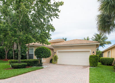 Boynton Beach Single Family Home For Sale: 7148 Twin Falls Drive
