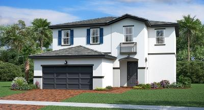 Port Saint Lucie Single Family Home For Sale: 12651 NW Milestone Place