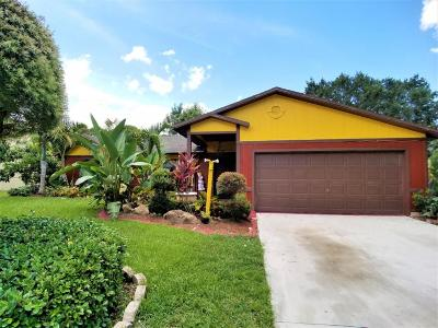 Port Saint Lucie Single Family Home For Sale: 885 SW Andrew Road