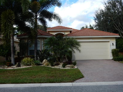 Boynton Beach Single Family Home For Sale: 6703 Shamrock Trail