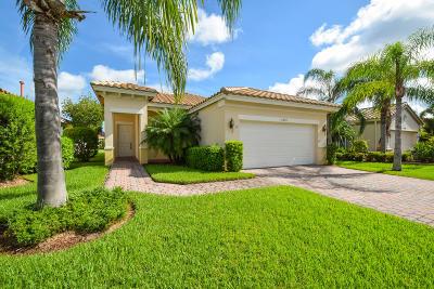 Port Saint Lucie Single Family Home For Sale: 11315 SW Mountain Ash Circle