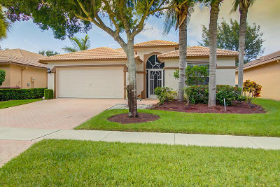 Boynton Beach Single Family Home For Sale: 8202 Duomo Circle