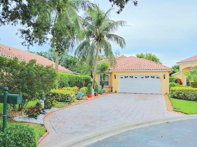 Boynton Beach Single Family Home For Sale: 11082 Indian Lake Circle