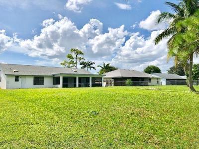 Royal Palm Beach Single Family Home For Sale: 133 Cordoba Circle