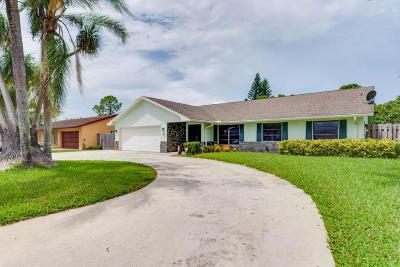 Royal Palm Beach Single Family Home For Sale: 351 Sandpiper Avenue