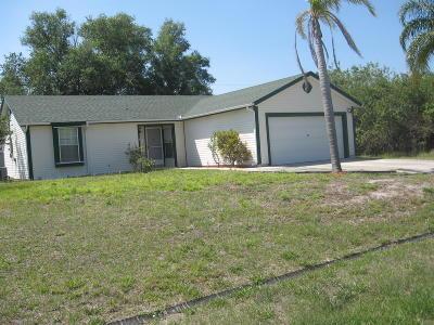 Port Saint Lucie Single Family Home For Sale: 858 SW Haas Avenue