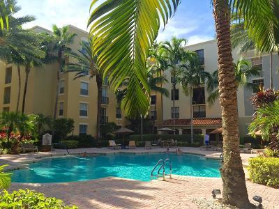 West Palm Beach Rental For Rent: 780 S Sapodilla Avenue #308