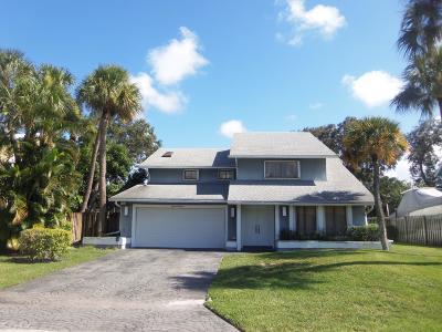 Palm Beach Single Family Home For Sale: 1114 Rainwood Circle W
