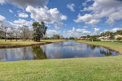 Wellington Single Family Home For Sale: 2497 Vista Del Prado Drive