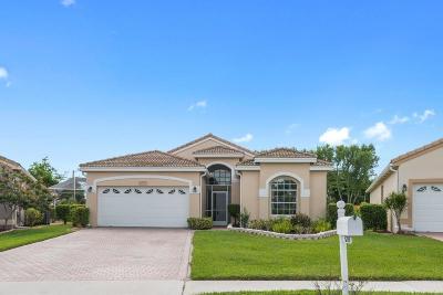 Boynton Beach Single Family Home For Sale: 6768 Camille Street