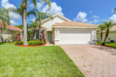 Port Saint Lucie Single Family Home For Sale: 854 SW Munjack Circle
