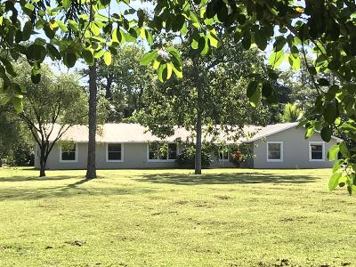 Jupiter Single Family Home For Sale: 17062 Haynie Lane