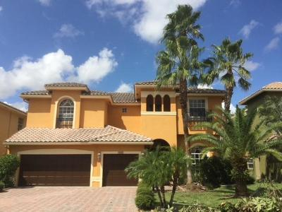 Boynton Beach Single Family Home For Sale: 9803 Coronado Lake Drive