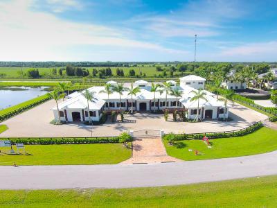Wellington Single Family Home For Sale: 14878 Grand Prix Village Drive
