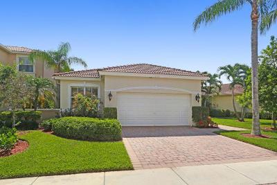 Palm Beach Gardens Single Family Home For Sale: 248 Isle Verde Way