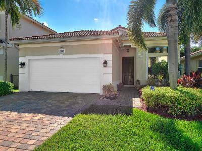 Boynton Beach Single Family Home Contingent: 7993 Tangelo Drive