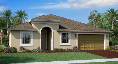 Fort Pierce Single Family Home For Sale: 4210 Birkdale Drive