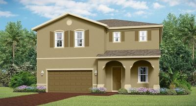 Fort Pierce Single Family Home For Sale: 4222 Birkdale Drive