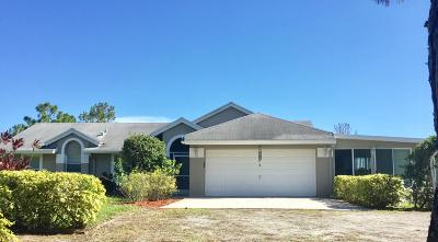 Loxahatchee Single Family Home For Sale: 16734 91st Place