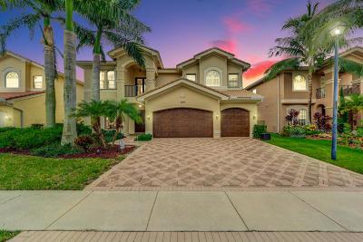 Boynton Beach Single Family Home For Sale: 11117 Misty Ridge Way