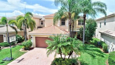 Boynton Beach Single Family Home Contingent: 10347 Gentlewood Forest Drive