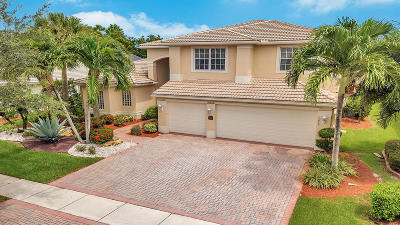 Lake Worth Single Family Home For Sale: 7869 Amethyst Lake Point