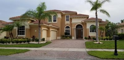 Port Saint Lucie Single Family Home For Sale: 11701 SW Rossano Lane