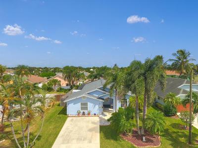 Jupiter Single Family Home For Sale: 6169 Foster Street