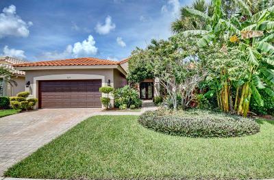 Boynton Beach Single Family Home For Sale: 9079 Padova Drive