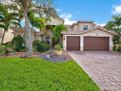 Lake Worth Single Family Home For Sale: 9898 Via Bernini