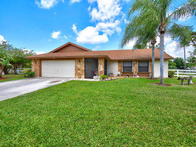 Lake Worth Single Family Home For Sale: 8689 Palomino Drive